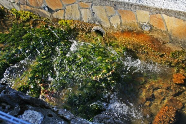 colorful brook