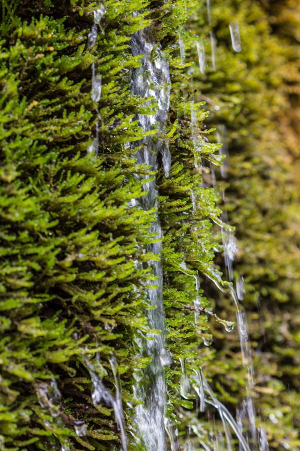 Wasserfall Dreimühlen #9