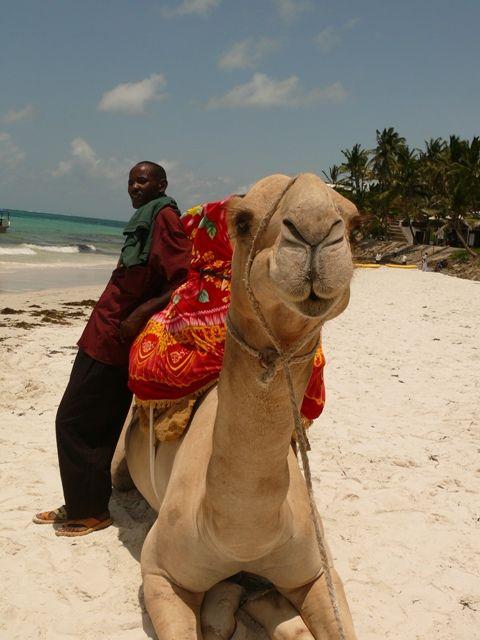 Momba beach Voyager Hotel