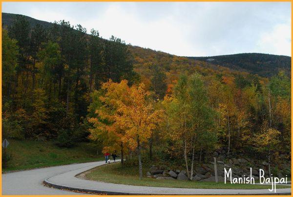Fall Autumn Franconian