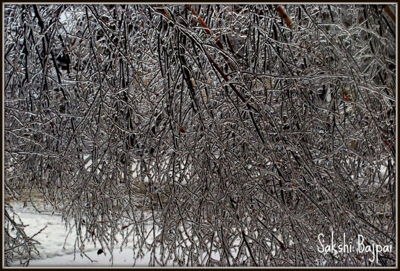 Winter Ice Storm Vermont