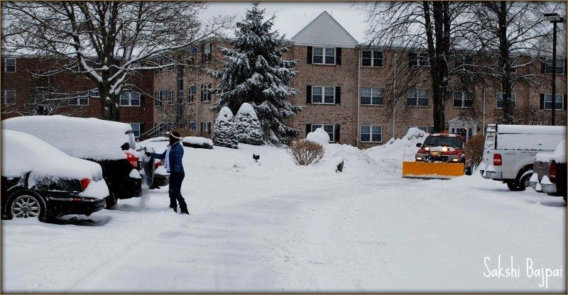 Boston Winter Snow