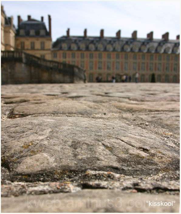 Macro au chateau de Fontainebleau mai 2008