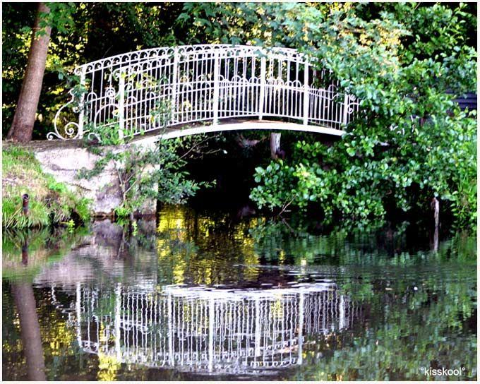 pont dans l'Essonne (aout 2009)