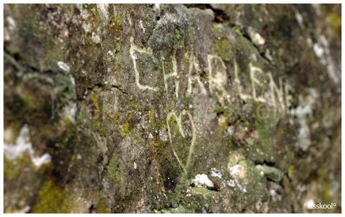 vieux mur à moret/loing (décembre09)