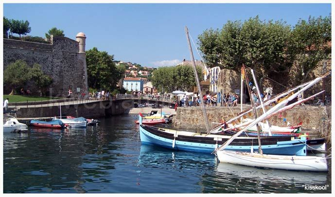 port de Collioure (aout 2009)