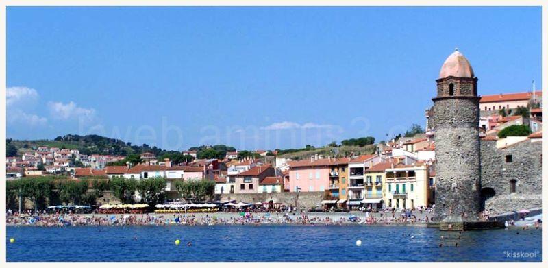 collioure plage de la vieille ville (aout2009)