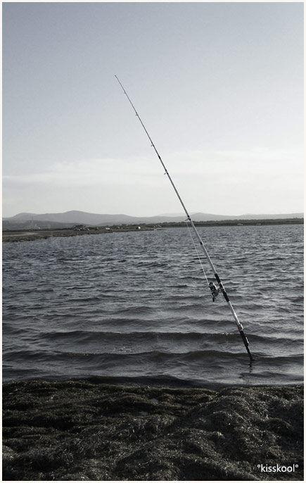 Pêche au large à Narbonne (aout2009)