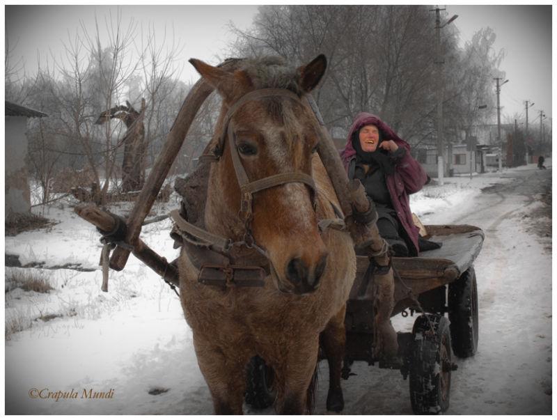 women riding horse, Piski