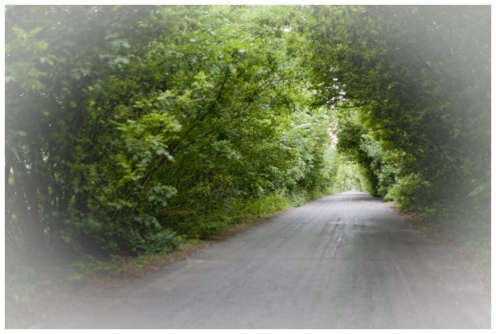 The  way to Piski