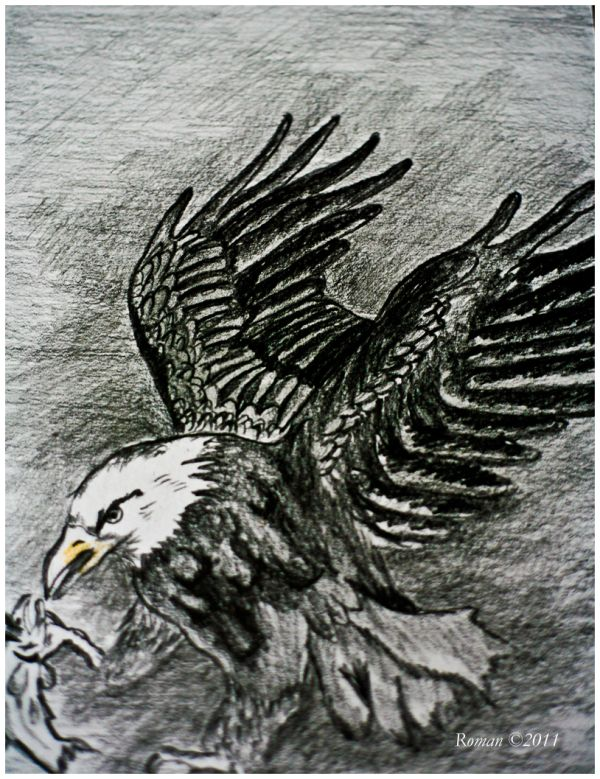 Drawing of an eagle