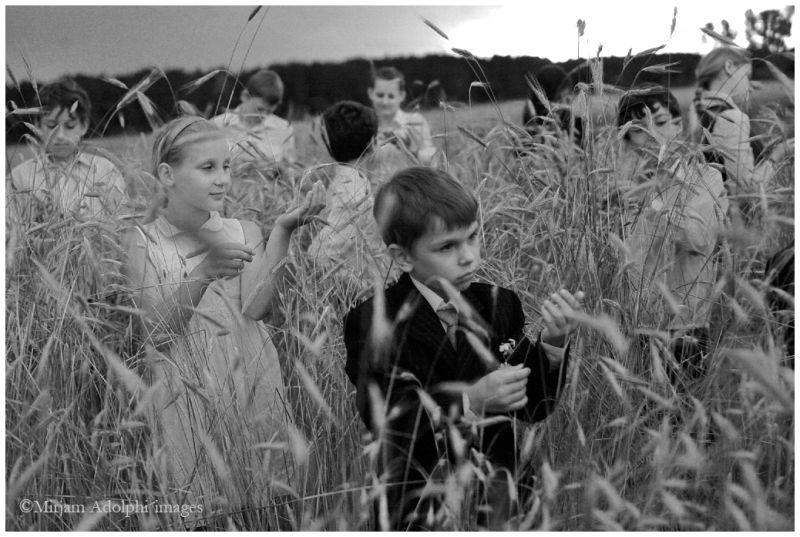 children, field, Haver, FrinedsHouse, Ukraine