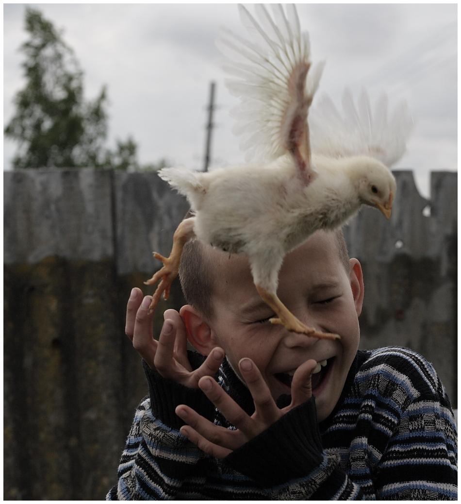 a boy with a chicken