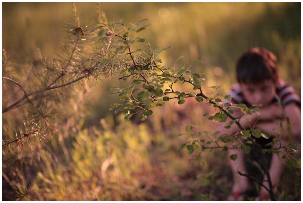 a boy alone