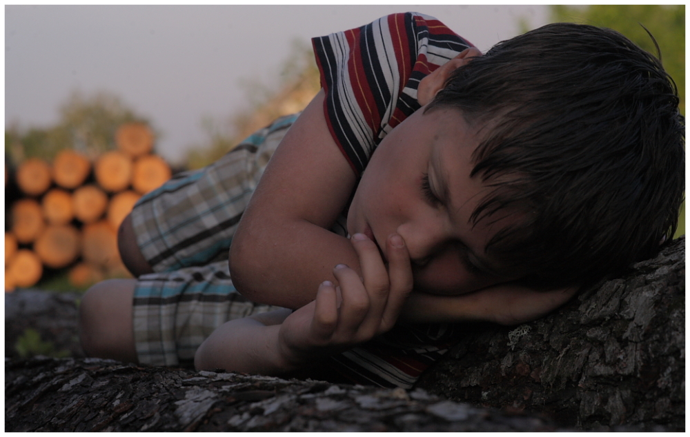 A child sleeping in the forest