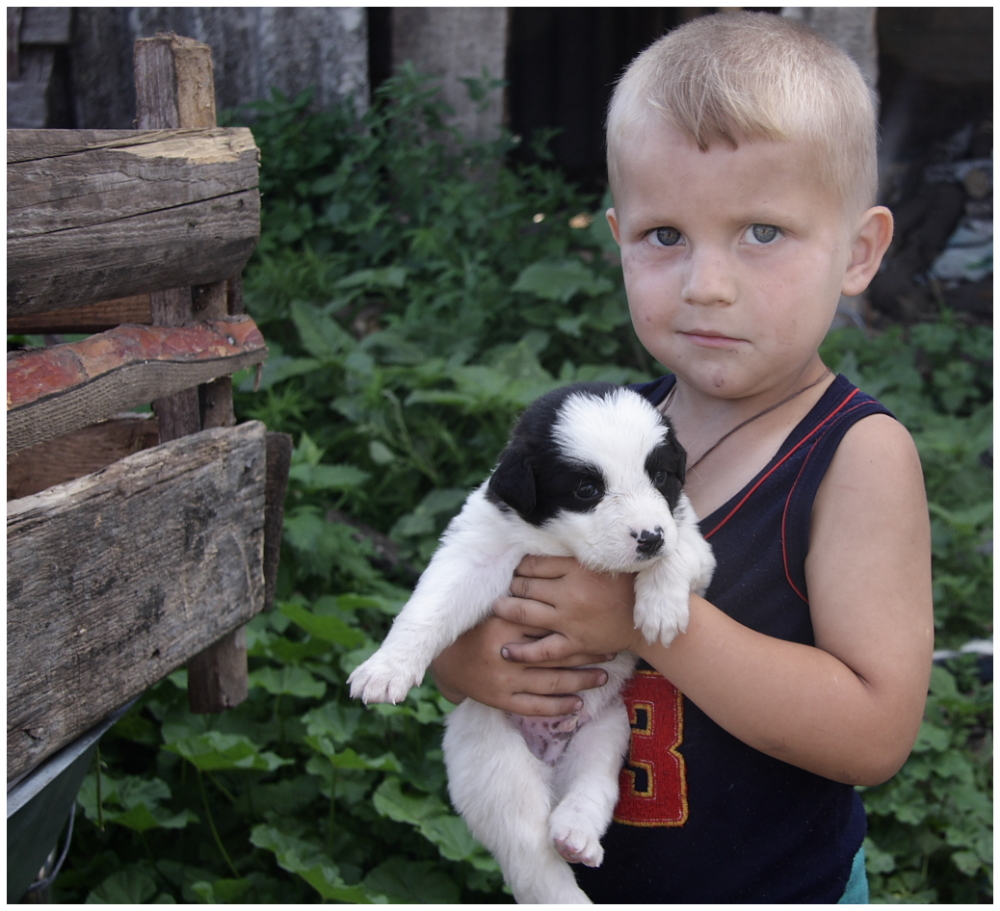 a child holding a puppy