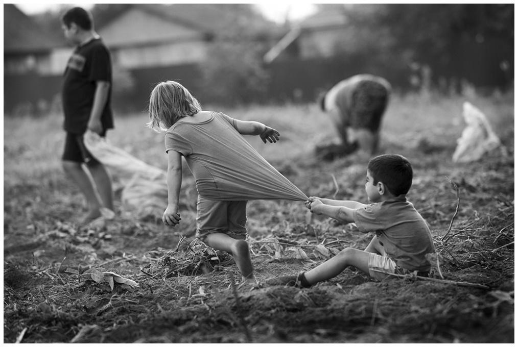 Field, work, potatoes and kids
