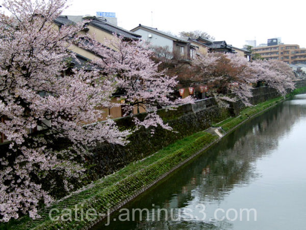 Kyoto, Avril 2008