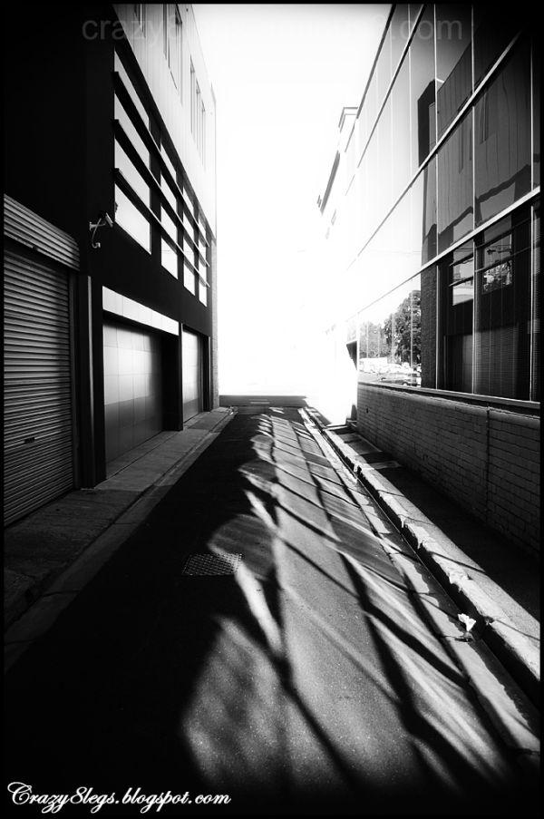 back alley's