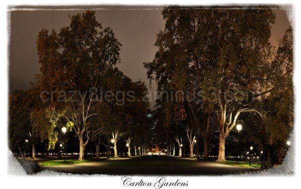 Carton Gardens