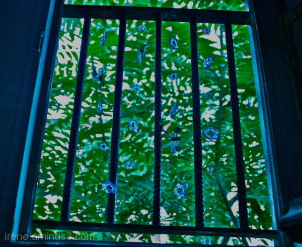 3 -Fenêtre fantaisie
