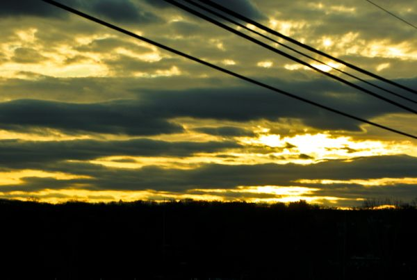 sun set dusk power lines tree