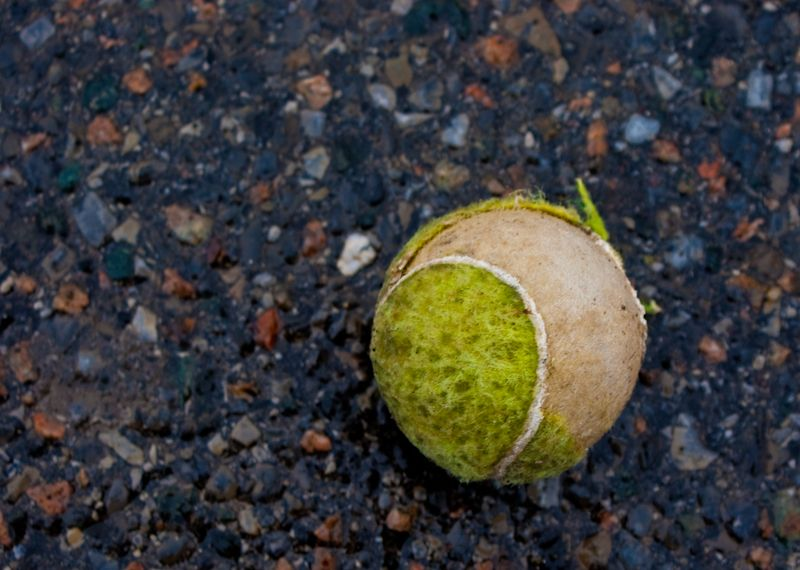 tennis ball asphalt ripped torn used damaged