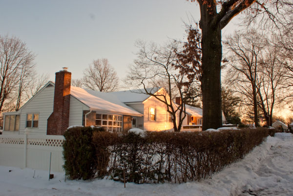 house tree snow light