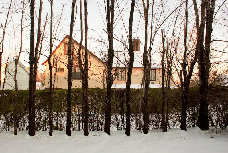 house tree snow