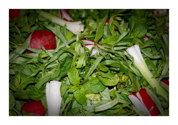 iran election green food