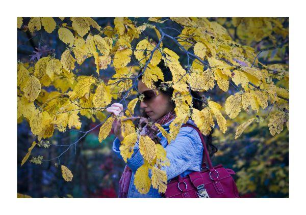 Think Autumn