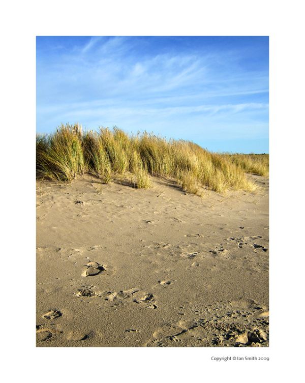 Grass, sand and sky of Holkham Beach, Norfolk