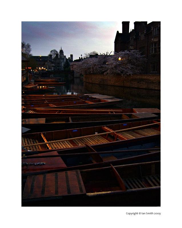 cambridge punting boats at dusk