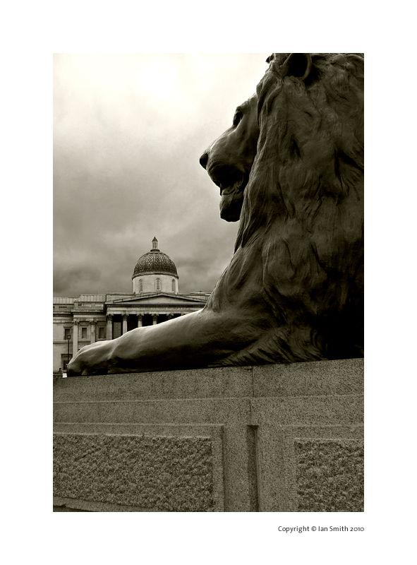 Landseer Lion & The National Gallery