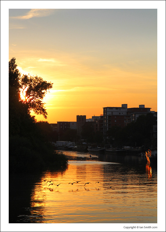Sunset and flying geese from Kew Bridge