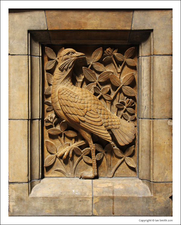 Carving of bird at Natural History Museum London