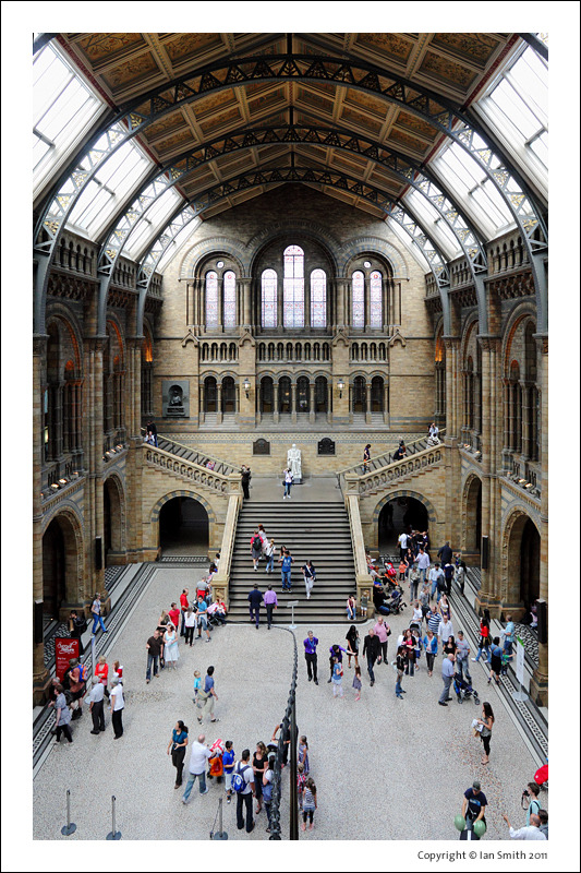 Central Hall in the Natural History Museum