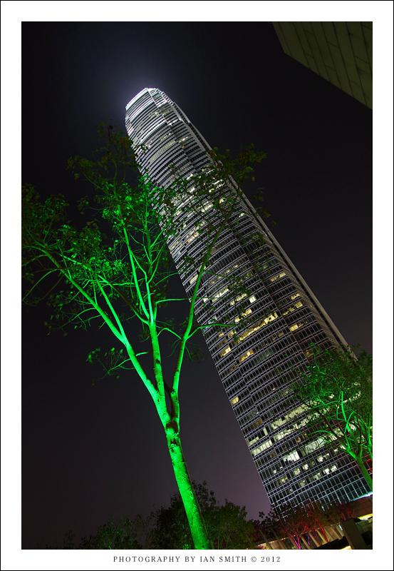 Green lit trees beneath 2IFC, Hong Kong