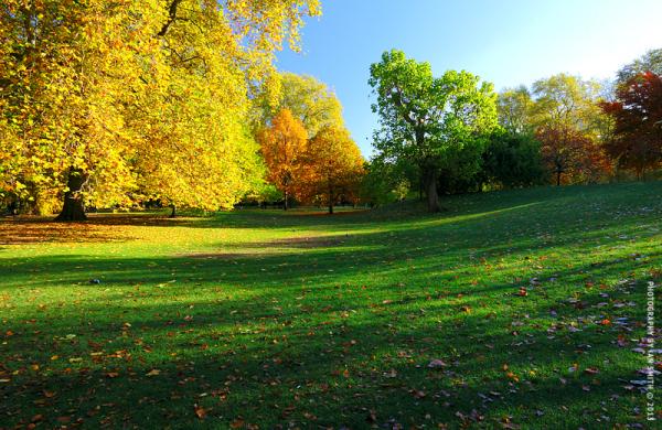 Autumn in St James's Park, London