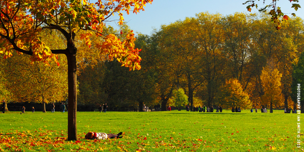 Woman laying down in Green Park, London