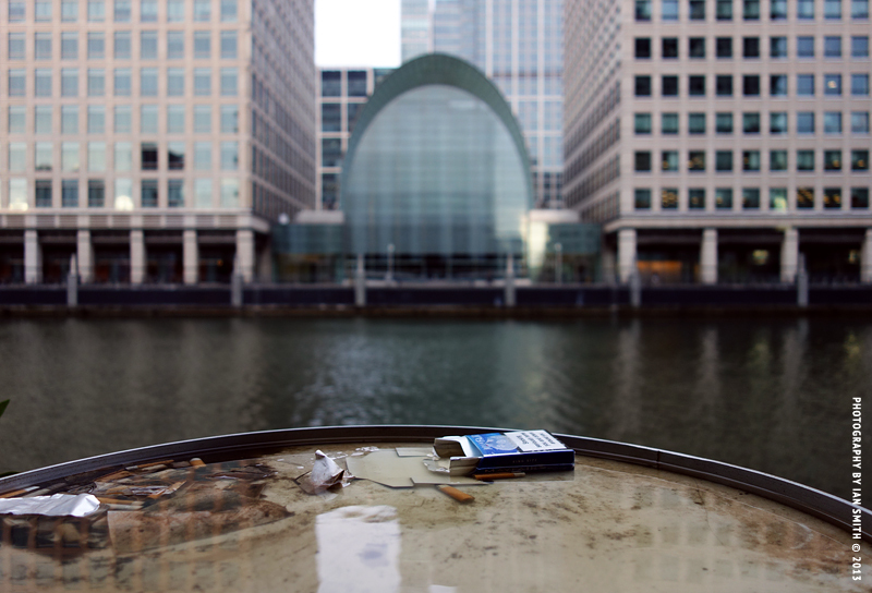 Discarded cigarette packet and butts in water