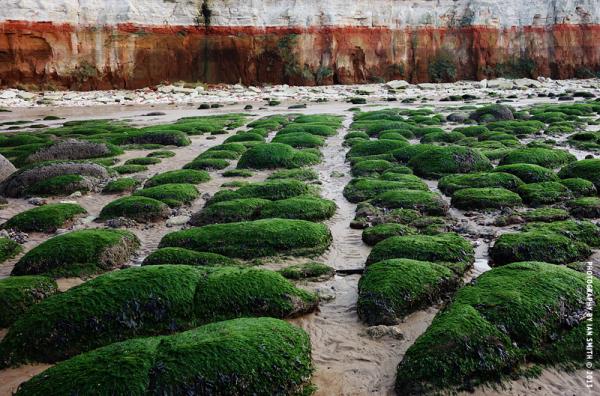 Textures of rock on Hunstanton beach