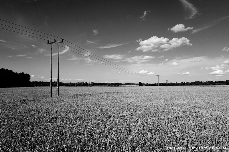 Transmission poles in Norfolk