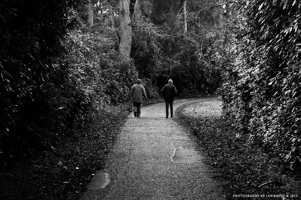 Walking in the Sandringham Estate