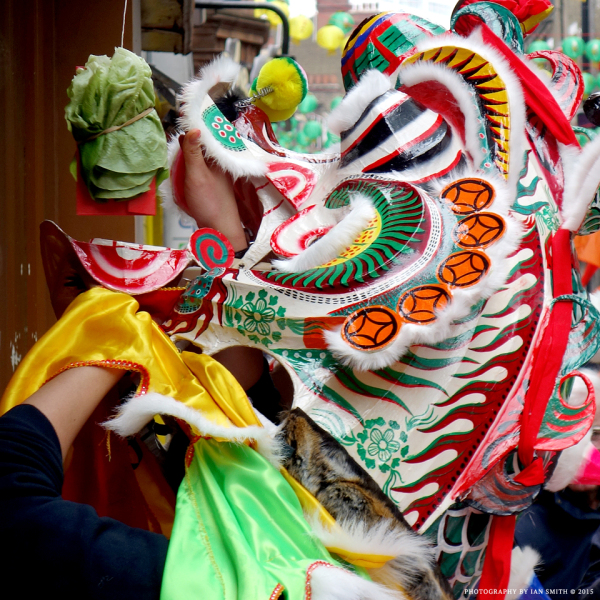 Head of a Lion Dancer grabbing the lettuce