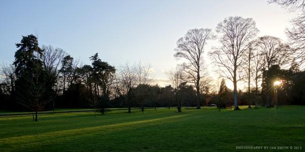 Setting sun over the Sandringham Estate