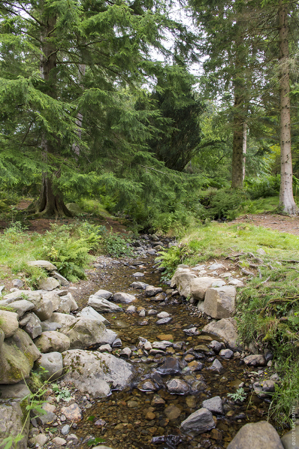 A stream in the Lake District, Cumbria