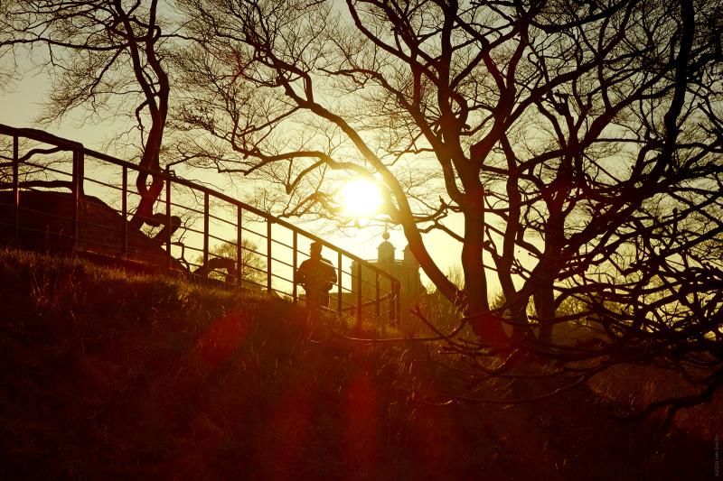 One Tree Hill Greenwich Sunset