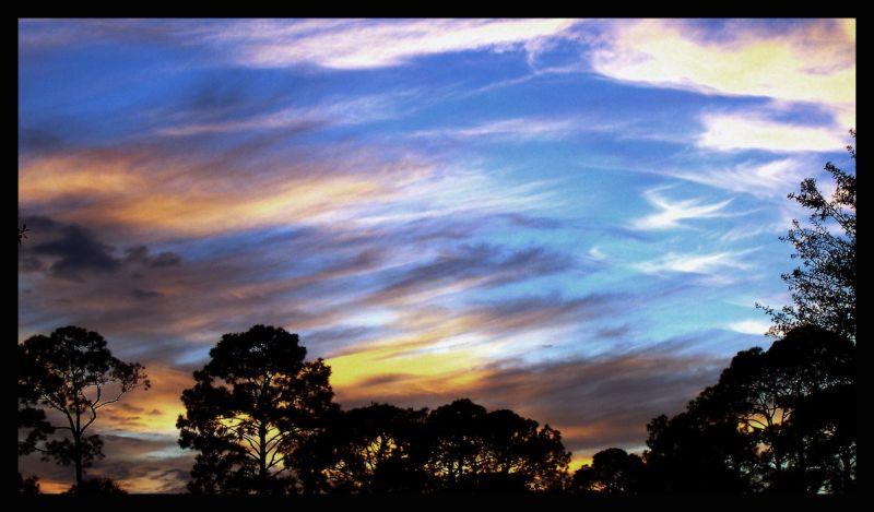 gainesville sky