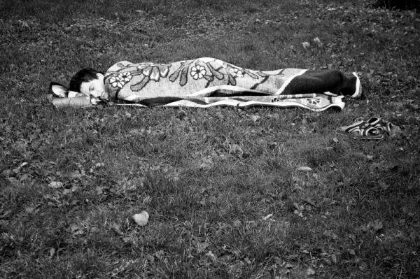 rest, grass, blanket, sleeping
